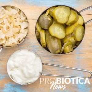 """Experten legen eine globale Definition für """"fermentierte Lebensmittel"""" fest"""