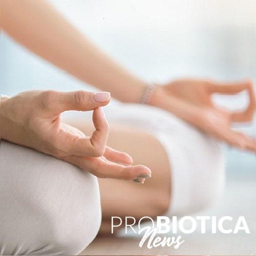 Meditation und Mikrobiota